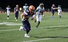 Navigation to Story: Madison Trojans Fall to the Carterville Lions