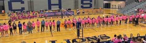 Pink Out Night Brings in a Win for the Lions